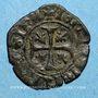 Münzen Comté de Provence. Jeanne de Naples (1343-1382). Liard