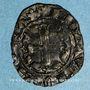 Münzen Principauté d'Orange. Raymond V (1340-1393). Demi- carlin