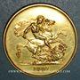 Münzen Grande Bretagne. Victoria (1837-1901). 5 livres 1887. (PTL 917‰. 39,94 g)