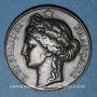 Münzen Ht-Rhin. Société départementale d'agriculture du Haut-Rhin – Prix d'encouragement. 1849. Médaille br