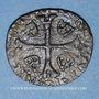 Münzen Louis XIII (1610-1643). Douzain illégal émis par les Huguenots et refrappé  sur un double tournois