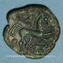 Münzen Ambiani. Région d'Amiens. Bronze au cheval et au sanglier, vers 60 - 30/25 av. J-C