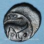 Münzen Ambiani. Région d'Amiens. Bronze au sanglier et au cheval, vers 60 - 30/25 av. J-C
