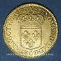 Münzen Louis XIV (1643-1715). Louis d'or à l'écu 1690 A. Réformation