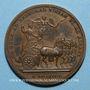 Münzen Louis XIV. Campagne d'Allemagne. Médaille bronze 1678