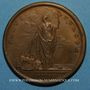 Münzen Louis XIV. Paix de Ryswick. Médaille bronze 1697