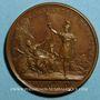 Münzen Louis XIV. Prise de Verrua. Médaille bronze 1705