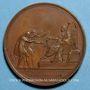 Münzen Louis XVIII. Charte Constitutionnelle. Médaille bronze, 1814