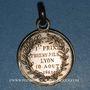 Münzen Lyon. Chevalerie du Buisson (fondée en 1843). Médaille argent