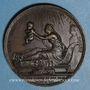 Münzen Naissance du duc de Bordeaux 1820. Médaille bronze