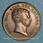 Münzen Pays-Bas. Guillaume I (1815-1840). Couronnement, 1815. Médaille cuivre. 23 mm.