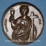 Münzen Saint-Pierre. Médaille bronze. 37 mm