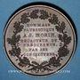 Münzen Révolution de 1830. Lyon. Médaille cuivre 56 mm. Signée Dantzell