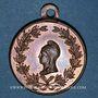 Münzen Révolution de 1848. Club des Francs-Républicains. Médaille cuivre. 27 mm