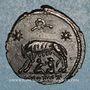 Münzen Monnayage pour Rome. Centenionalis. Arles, officine incertaine.  332-333. R/: la Louve